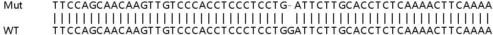 Sanger Sequencing - Human LRRK1 knockout HeLa cell line (ab264726)