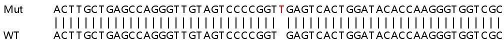 Sanger Sequencing - Human PODXL knockout HeLa cell line (ab264984)