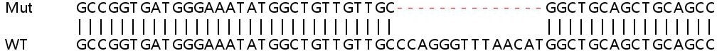 Sanger Sequencing - Human NLK knockout HeLa cell line (ab265001)