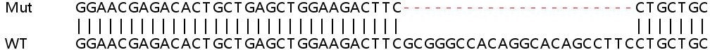Sanger Sequencing - Human LTB4R2 knockout HeLa cell line (ab265153)