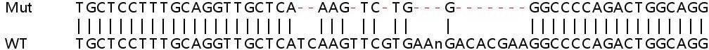 Sanger Sequencing - Human ABCC1 knockout HeLa cell line (ab265256)