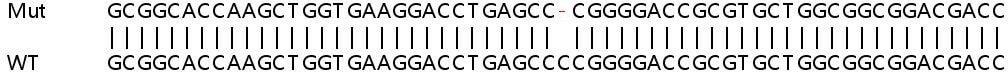 Sanger Sequencing - Human SHH knockout HeLa cell line (ab265450)