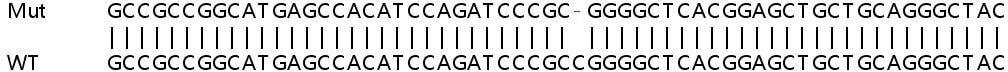 Sanger Sequencing - Human PRKAR2A knockout HeLa cell line (ab265748)