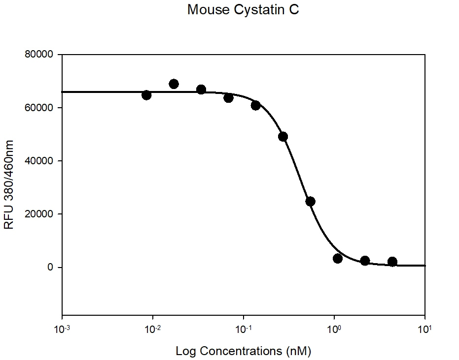 Functional Studies - Recombinant mouse Cystatin C protein (Active) (ab265859)