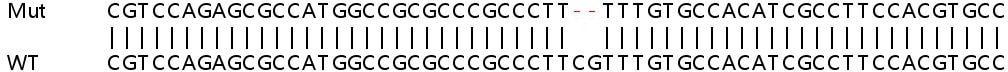 Sanger Sequencing - Human HPDL knockout HeLa cell line (ab265868)