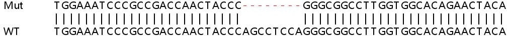 Sanger Sequencing - Human LXN knockout HeLa cell line (ab265921)