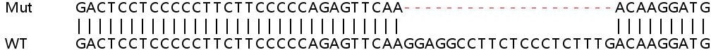 Sanger Sequencing - Human CALM3 knockout HEK293T cell line (ab266801)