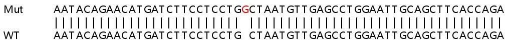 Sanger Sequencing - Human PDCD1LG2 knockout A549 cell line (ab267019)