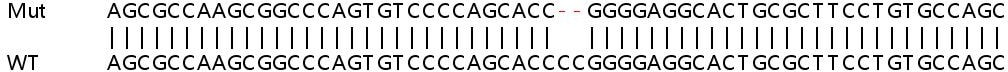 Sanger Sequencing - Human TRIM56 knockout A549 cell line (ab267062)