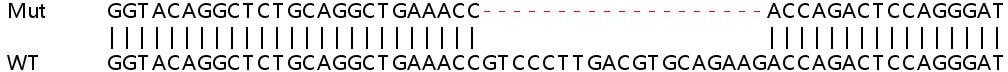 Sanger Sequencing - Human TLDC2 knockout A549 cell line (ab267101)