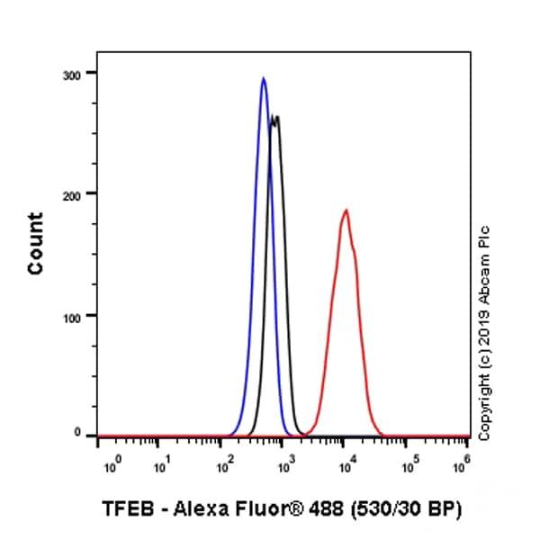 Flow Cytometry - Anti-TFEB antibody [EPR22941-6] - BSA and Azide free (ab267342)