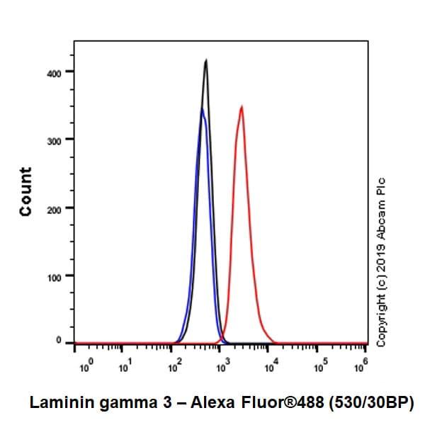 Flow Cytometry (Intracellular) - Anti-Laminin gamma 3 antibody [EPR22699-151] - BSA and Azide free (ab267391)