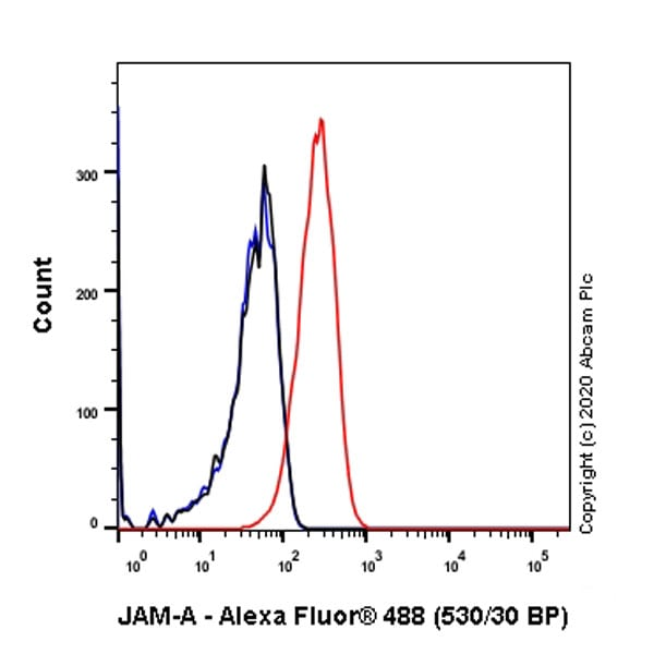 Flow Cytometry - Anti-Junctional Adhesion Molecule 1/JAM-A antibody [J10.4] - BSA and Azide free (ab267408)