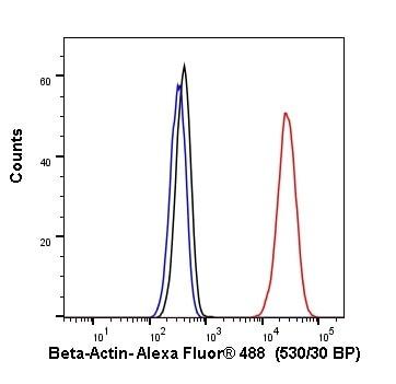 Flow Cytometry - Alexa Fluor® 488 Anti-beta Actin antibody [SP124] (ab267526)