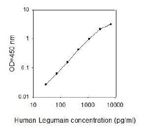 Human Legumain ELISA kit standard curve