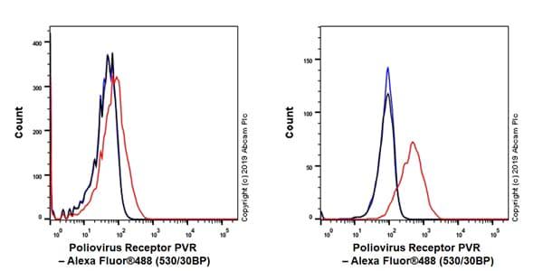 Flow Cytometry - Anti-Poliovirus Receptor/PVR antibody [EPR22672-151] (ab267788)