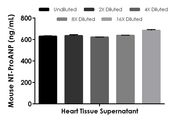 Interpolated concentrations of native NT-ProANP in mouse heart tissue culture supernatant samples.