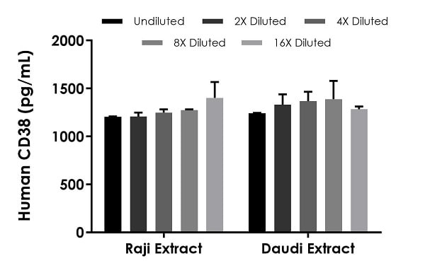 Interpolated concentrations of native CD38 in human Raji and Daudi cells based on a 5 µg/mL extract load.