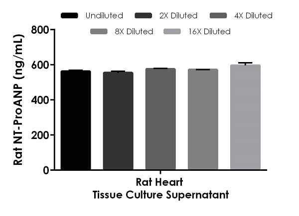 Interpolated concentrations of native NT-ProANP in rat heart tissue culture supernatant samples.