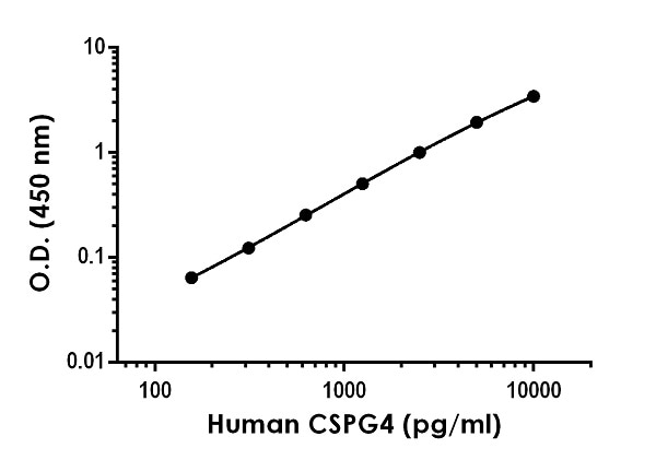 Example of human CSPG4 standard curve in Sample Diluent NS.
