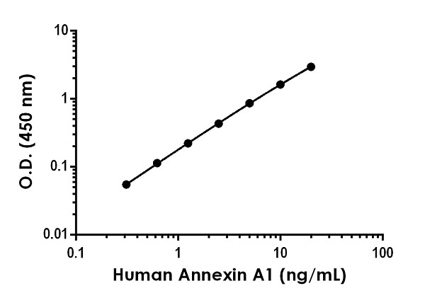 Example of human Annexin A1 (ANXA1) standard curve in 1X Cell Extraction Buffer PTR.