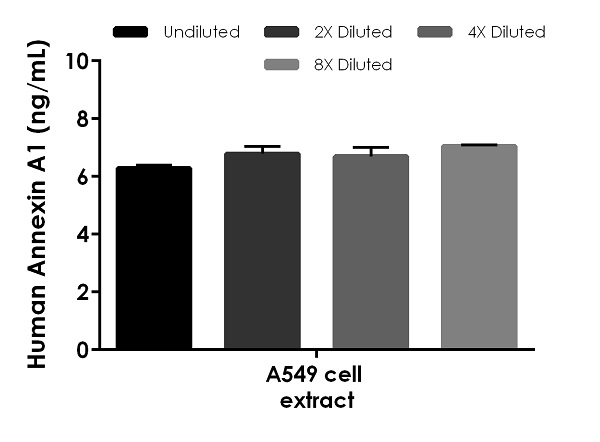 Interpolated concentrations of native Annexin A1 in human A549 cell extract based on a 1.25 µg/mL extract load.