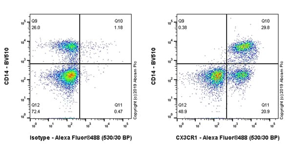 Flow Cytometry - Anti-CX3CR1 antibody - BSA and Azide free (ab267834)