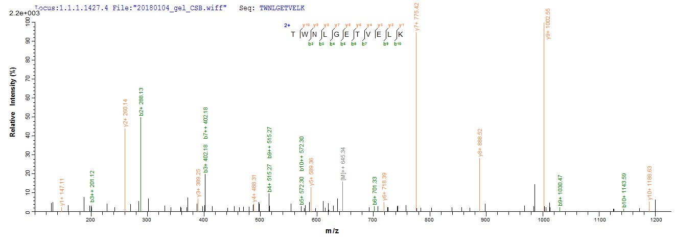 Mass Spectrometry - Recombinant Human CD8 alpha protein (ab267853)