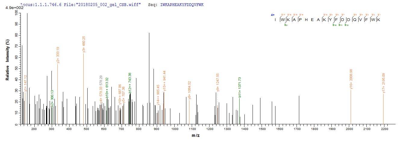 Mass Spectrometry -  (ab267935)