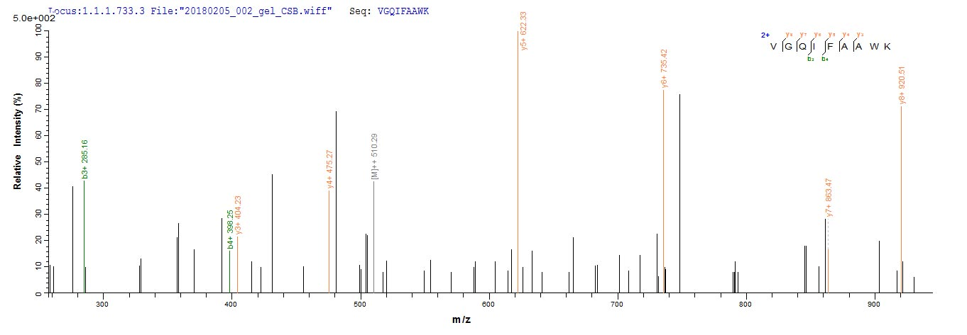 Mass Spectrometry -  (ab267936)