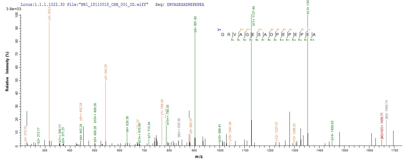 Mass Spectrometry - Recombinant Rat TGF beta 1 protein (His tag) (ab268004)