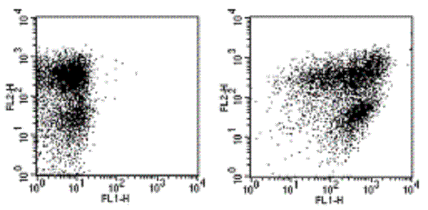 Flow Cytometry - Anti-Ly-6A/E antibody [D7] (FITC) (ab268016)