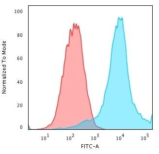 Flow Cytometry - Anti-Hsp27 antibody [CPTC-HSPB1-2] - BSA and Azide free (ab268194)