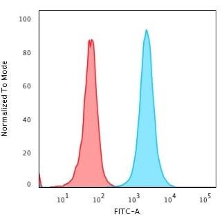 Flow Cytometry - Anti-Nucleophosmin antibody [rNPM1/1901] - BSA and Azide free (ab268213)