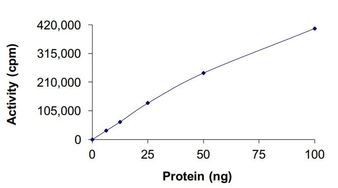 Functional Studies - Recombinant human AMPK alpha 1 + AMPK beta 1 + PRKAG2 protein (Active) (ab268333)