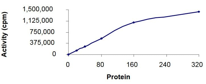 Functional Studies - Recombinant human AMPK alpha 1 + AMPK gamma 1 + AMPK beta 2/PRKAB2 protein (Active) (ab268337)