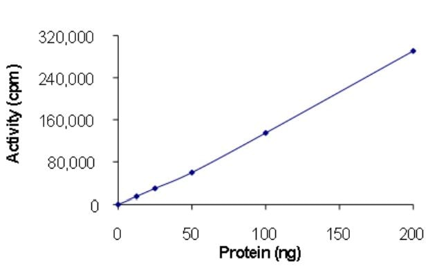 Functional Studies - Recombinant human EGFR deletion 746-750 (mutated T790 M + L858 R) protein (Active) (ab268467)