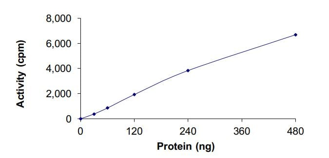 Functional Studies - Recombinant EGFR (mutated P753 S & del747-752) protein (Active) (ab268473)
