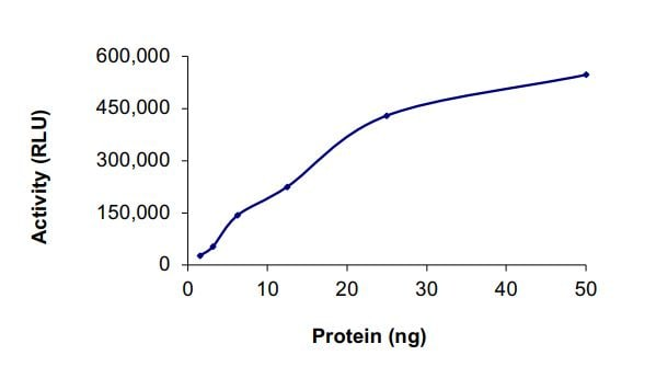 Functional Studies - Recombinant human EGFR (D770_N771insNPG) protein (Active) (ab268479)