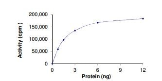 Functional Studies - Recombinant human BRAF + FAM131B protein (ab268549)