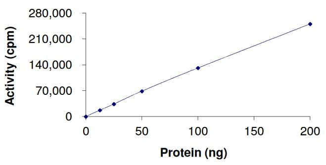 Functional Studies - Recombinant human FGFR2 (mutated N549 H) protein (Active) (ab268568)