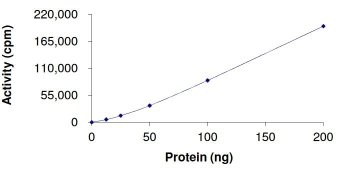 Functional Studies - Recombinant human FGFR3 (mutated K650 M) protein (Active) (ab268573)