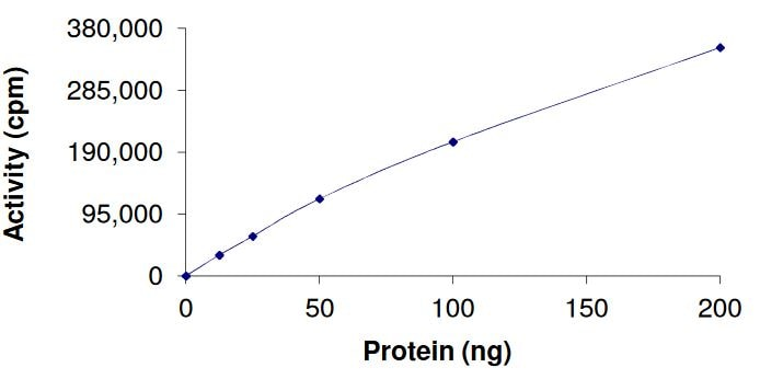 Functional Studies - Recombinant human FGFR4 (mutated V550 L) protein (Active) (ab268577)