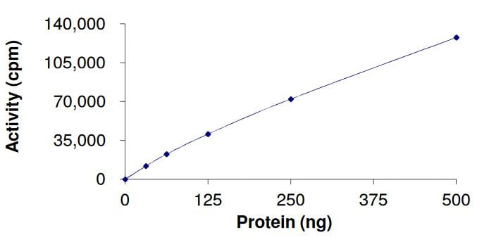 Functional Studies - Recombinant human FGFR4 (mutated V550 M) protein (Active) (ab268578)