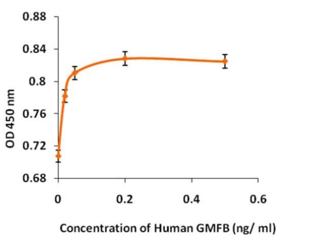 Functional Studies - Recombinant human GMFB protein (ab268595)