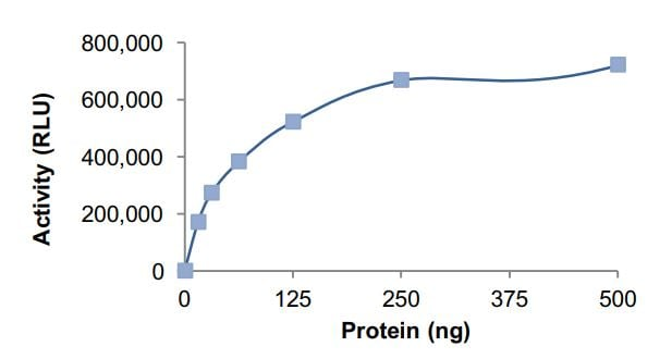 Functional Studies - Recombinant human GNAI2 protein (Active) (ab268600)