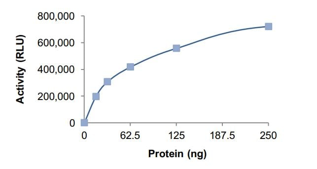 Functional Studies - Recombinant human GNAI3 protein (Active) (ab268601)