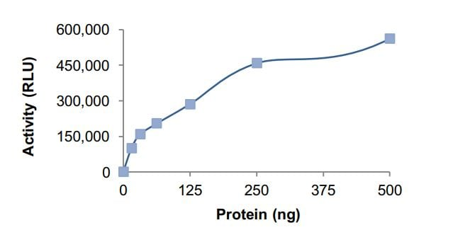 Functional Studies - Recombinant human GNAS protein (Active) (ab268602)