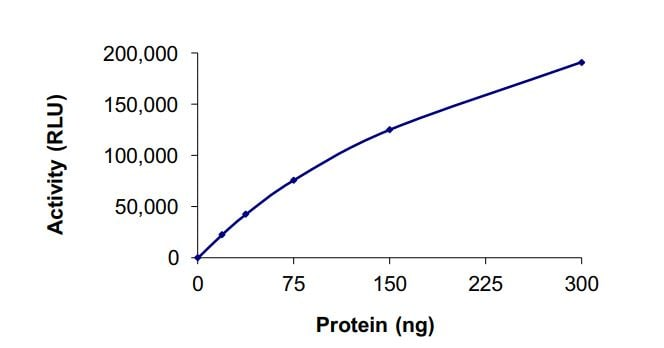 Functional Studies - Recombinant human HDAC4 protein (Active) (ab268614)