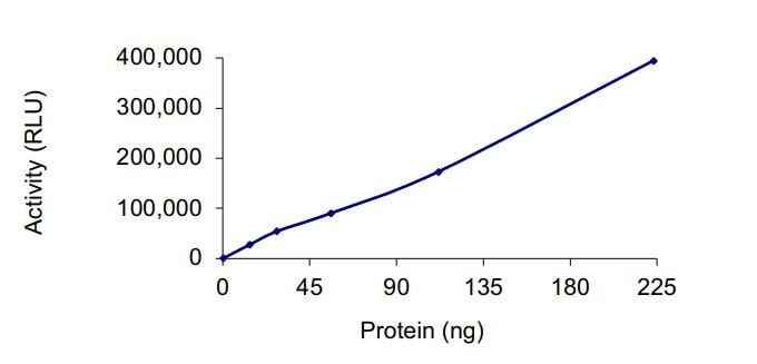 Functional Studies - Recombinant human HDAC protein (Active) (ab268618)